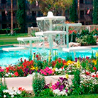 Fellowship Square grounds with flowers and pool